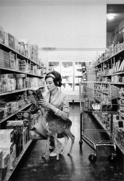Audrey Hepburn & Ip, Market