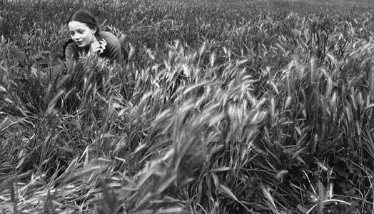 Virginia-Faginia-lying-in-the-grass-Rome-1957